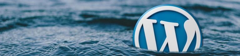 WordPress Themes: leere Live-Vorschau neuer Themen