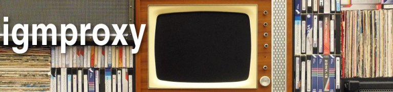 igmproxy: Telekom IPTV mit EdgeRouter